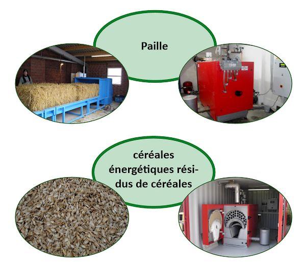 combustibles biomasse kotherm biomasse heizanlagen. Black Bedroom Furniture Sets. Home Design Ideas